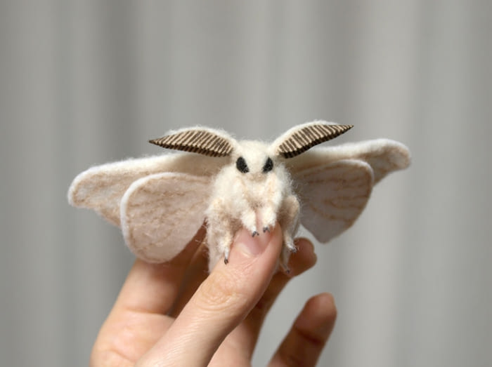 14 Weird-Looking Creatures You've Never Seen Before - One ...